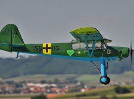 Storch_1