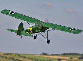 Storch_5